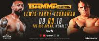 BAMMA Interim Heavyweight Title On The Line At BAMMA 34